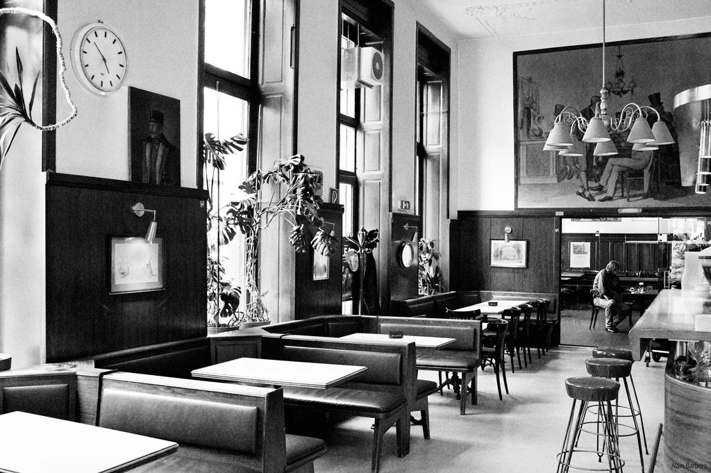café anzengruber, cafés viennois, kaffeehaus, vienne, blog, alain barbero, barbara rieger, café entropy